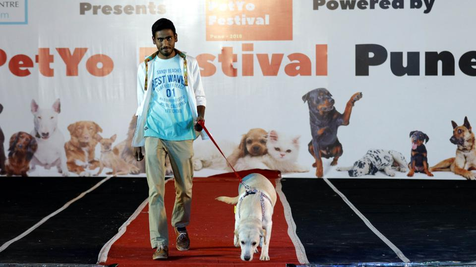 The four-legged friend followed the master on the ramp amidst laughter and excitement at the PetYo festival at Amanora Club House in Pune on April 8. (RAHUL RAUT/HT PHOTO)