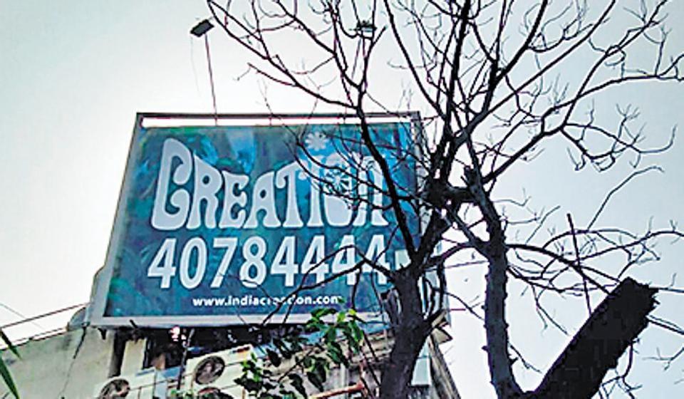 mumbai news,illegal tree cutting,tree trimming