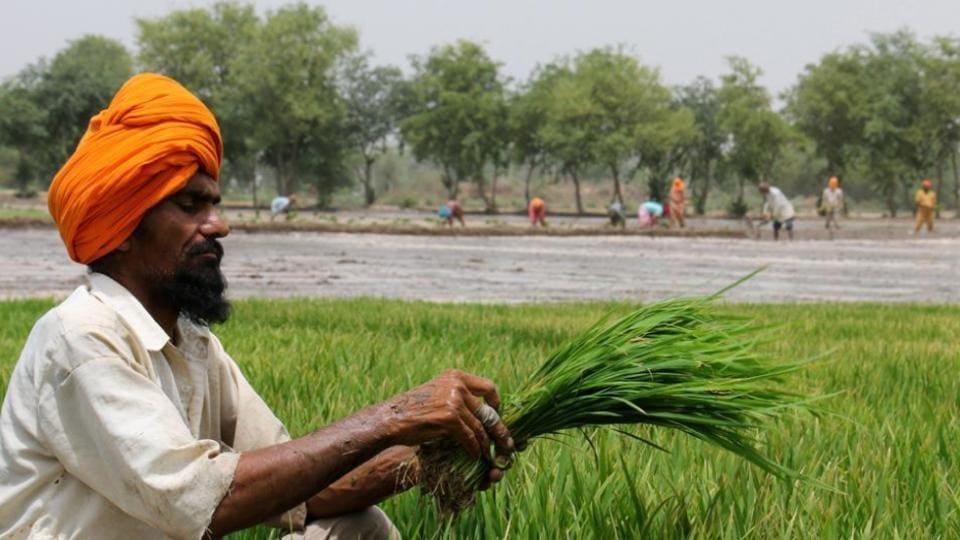 Farmers,Farmers not to sell milk,Kisan Avkash