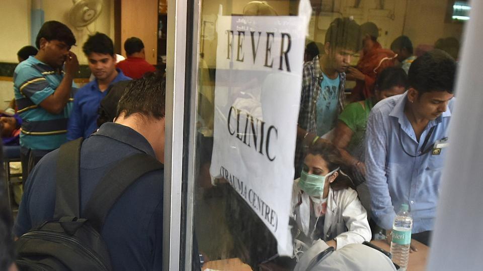 Dengue,Mosquito borne disease,Delhi high court