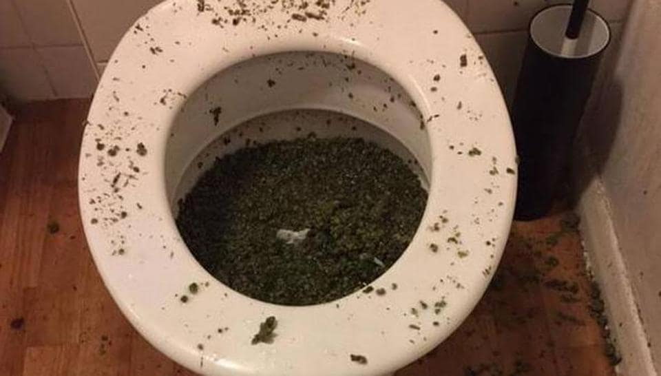 When the residents tried to flush down their stash of weed, it clogged the toilet and alerted the cops.