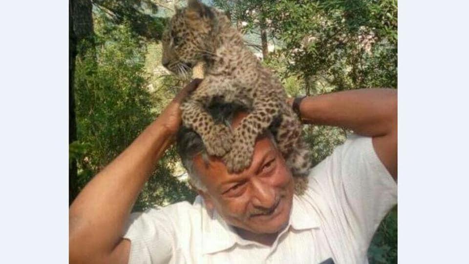 Wildbuzz column,The lovable bandit,Himachal Pradesh Wildlife Advisory Board