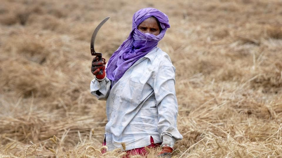 Rajasthan is giving the maximum amount of accident insurance to farmers, said cooperative minister Ajay Singh Kilak.