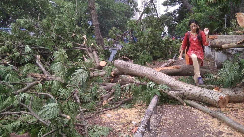 Bengal storm,norwester,storm in Kolkata