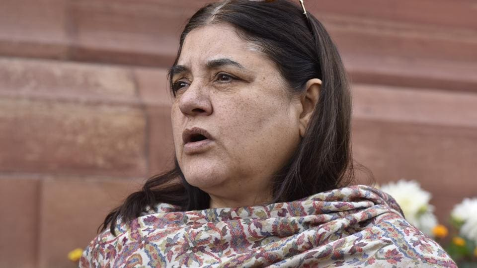 Sexual offences,Maneka Gandhi,Special police cell