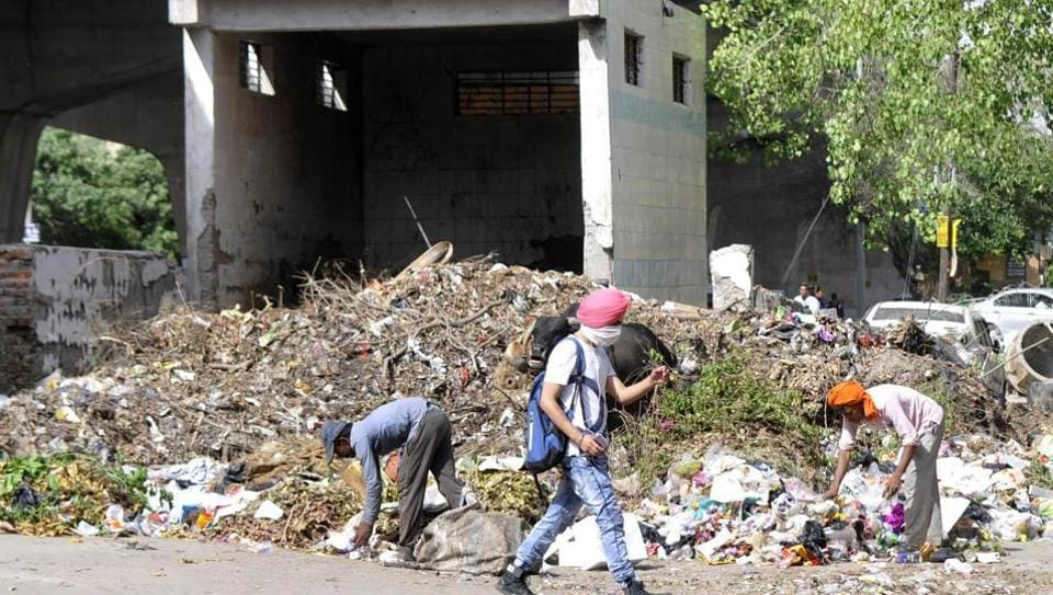 Garbage has been piling up in the city, as seen in Sector 28 (above). The authority also has plans to develop a waste-to-energy plant at the Sector 123 landfill site.