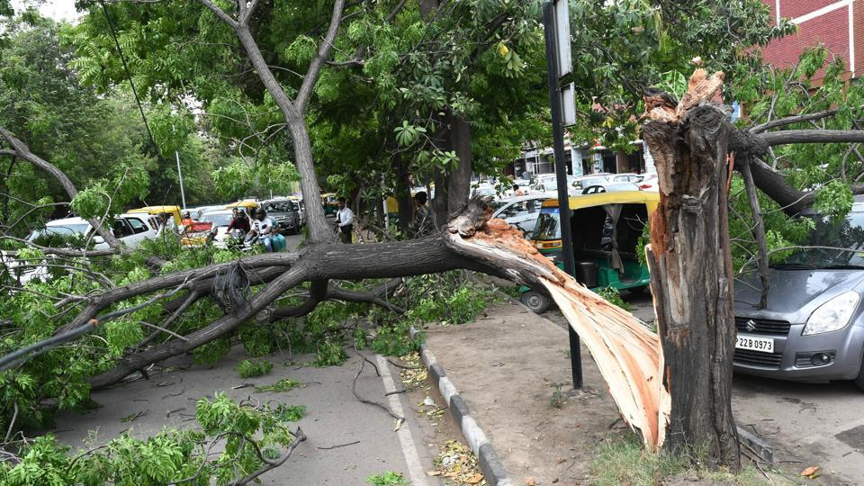 Fatal winds,freak accidents,High-speed winds