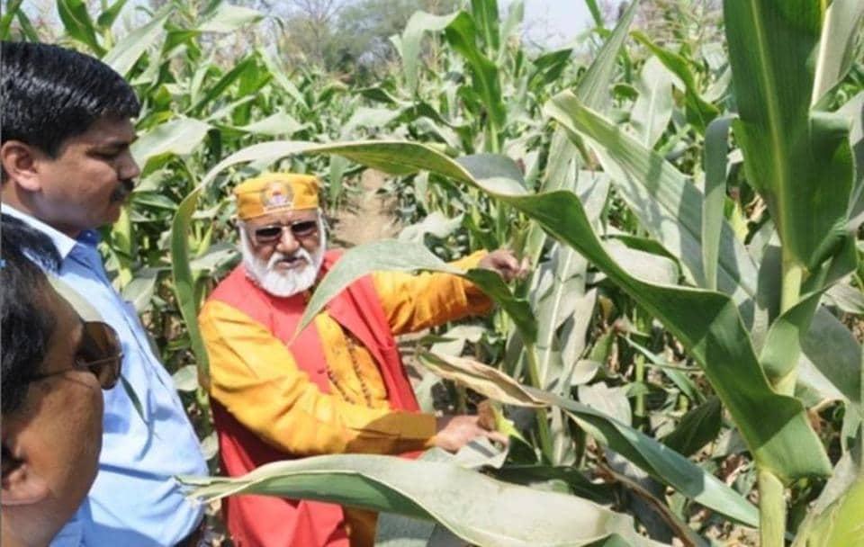 Prof Shailesh Marker (left) showing crop of SHIATS Makka-2 to SHUATS VC Prof Rajendra B Lal.