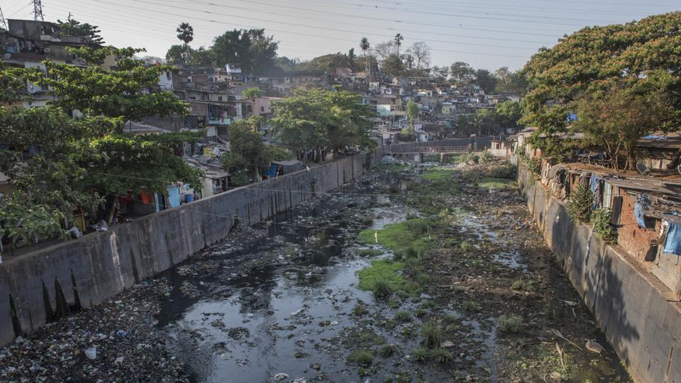 The civic body has kick-started the long-pending Mithi River Water Quality Improvement Programme by floating tenders for the phase 1.