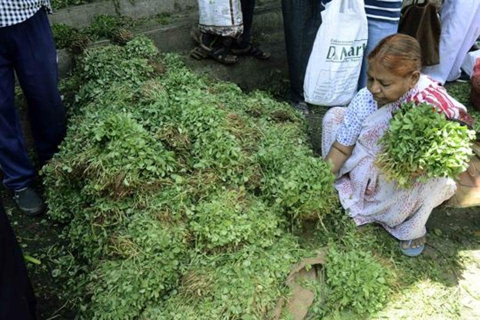 Pune,leafy vegetables,cost