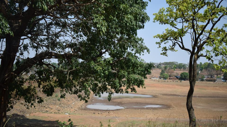 Remnants of the Gayatri River during summer.
