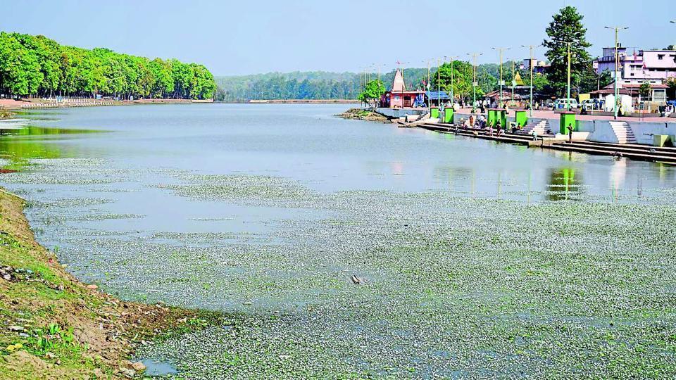 Narmada,Narmada pollution,River pollution
