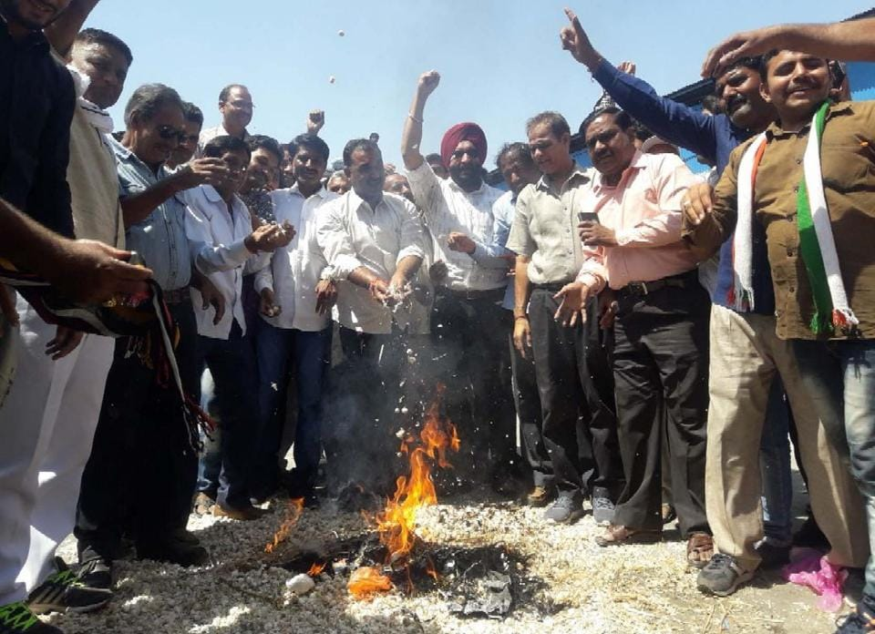 Farmers burning garlic , over low prices of garlic in Kota recently. HT FILE PHOTO