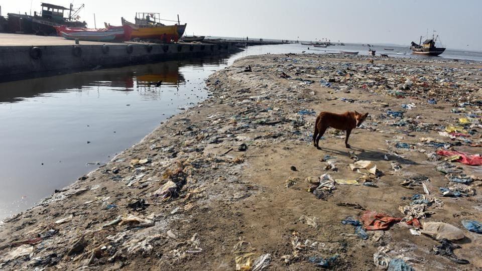 Platic Free Zones,World Environment Day,Plastic ban