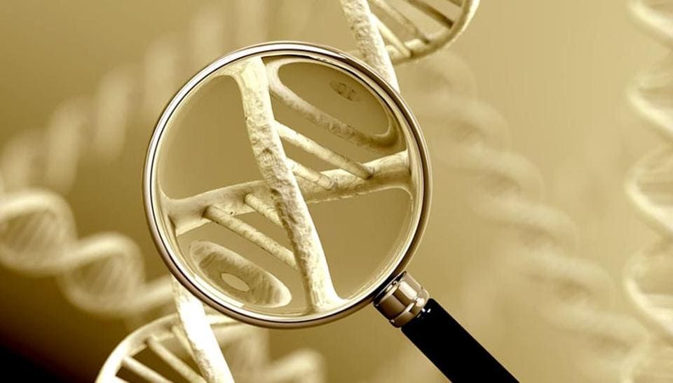 Centre said it would a bill for DNA profiling to enable authorities to maintain records of unidentified and unclaimed dead bodies or missing persons.