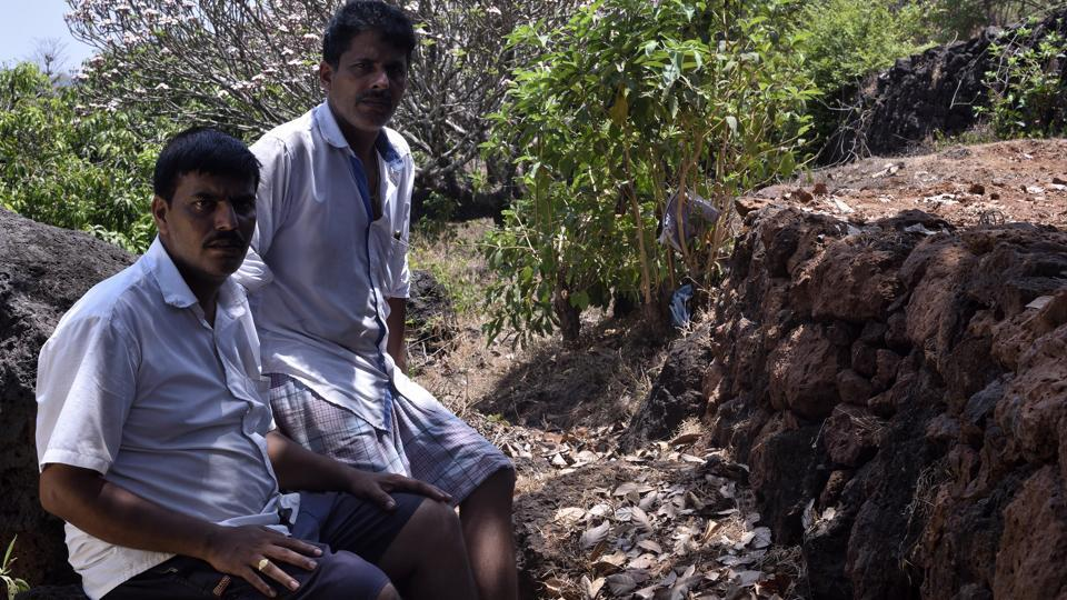 "Prabhudesai brothers, two mango farmers in the Rajapur Taluka region will lose 60% of land under mango plantations to the proposed refinery at Nanar. One of the brothers said, ""I hire 13 to 20 workers, some on a permanent basis, to run my orchard. Why would I want to work at the refinery."" (Anshuman Poyrekar / HT Photo)"