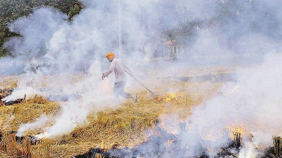 Officials of various state pollution control boards, however, claimed that this year, the number of crop burning incidents appear to be lesser.