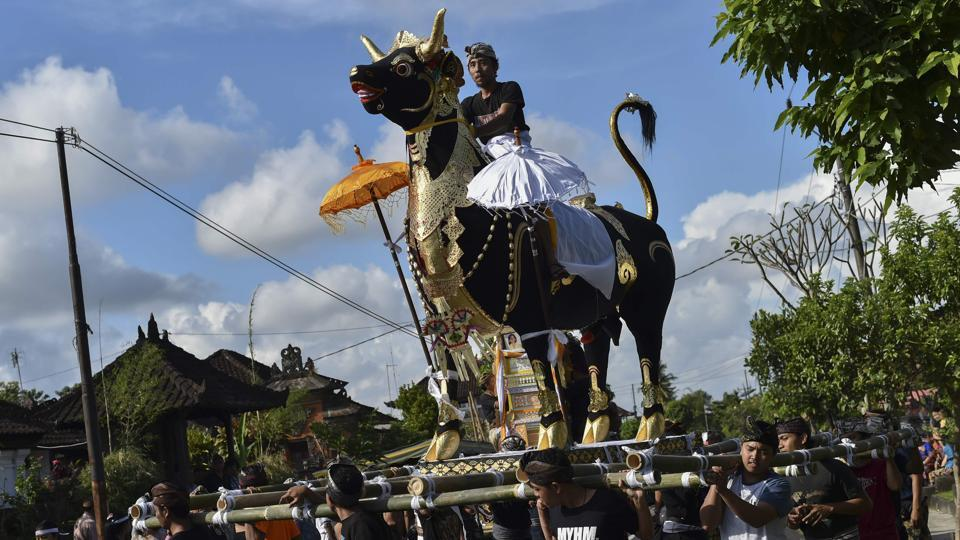 Along with the wadah the bodies are also cremated in the belly of a four-metre (13-foot) tall bull called a 'lembu'. Cows are sacred throughout Hinduism, the religion practised by most of Bali's residents. But Ngaben is distinctive to this Indonesian island and its indigenous Agama Hindu Dharma. (Bay Ismoyo / AFP)