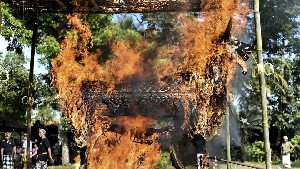 Flames engulf a wooden bull along with the remains of I Gusti Ketut Tika and Gusti Ayu Made Lemuh inside its belly, in an elaborate cremation that many on the mostly Hindu island of Bali in Indonesia see as crucial for peace in the afterlife. (Bay Ismoyo / AFP)