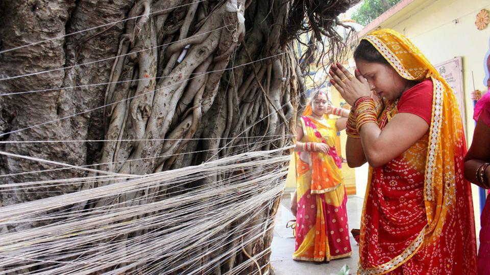 Women perform rituals near a Banyan tree during the 'Vat Savitri Puja' in Bhopal on Tuesday. On the occasion of this puja women observe a day-long fast and worship the Banyan tree for the longevity of their husbands. (PTI)