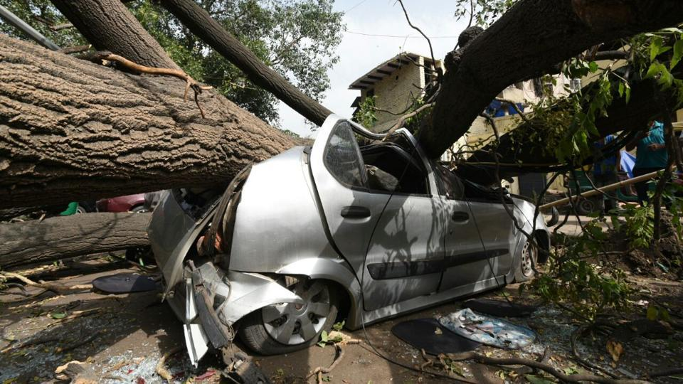 A tree fell on a car after an overnight dust storm hit Delhi in the early hours of Wednesday.
