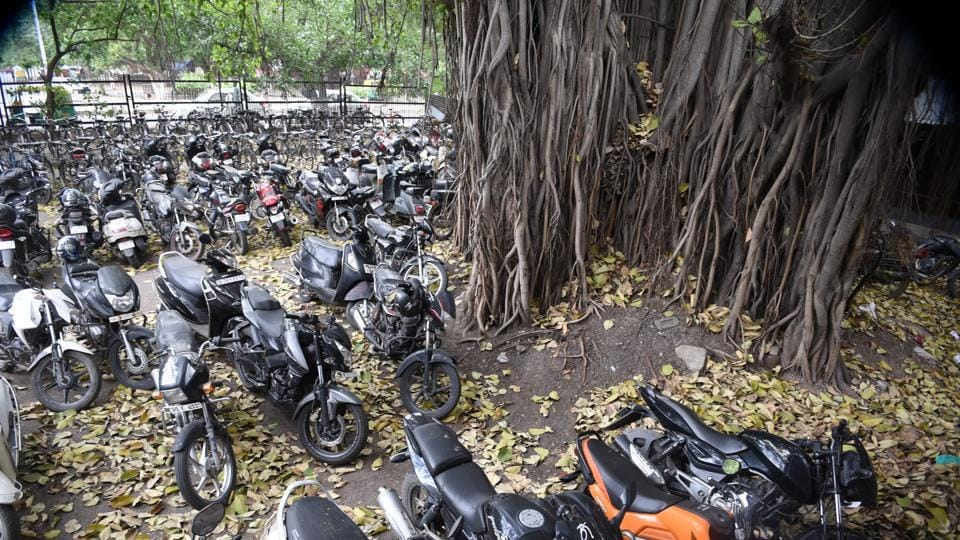 The Banyan tree seen in Sector 17 at ISBT parking  is 250 years old.  (HT Photo)