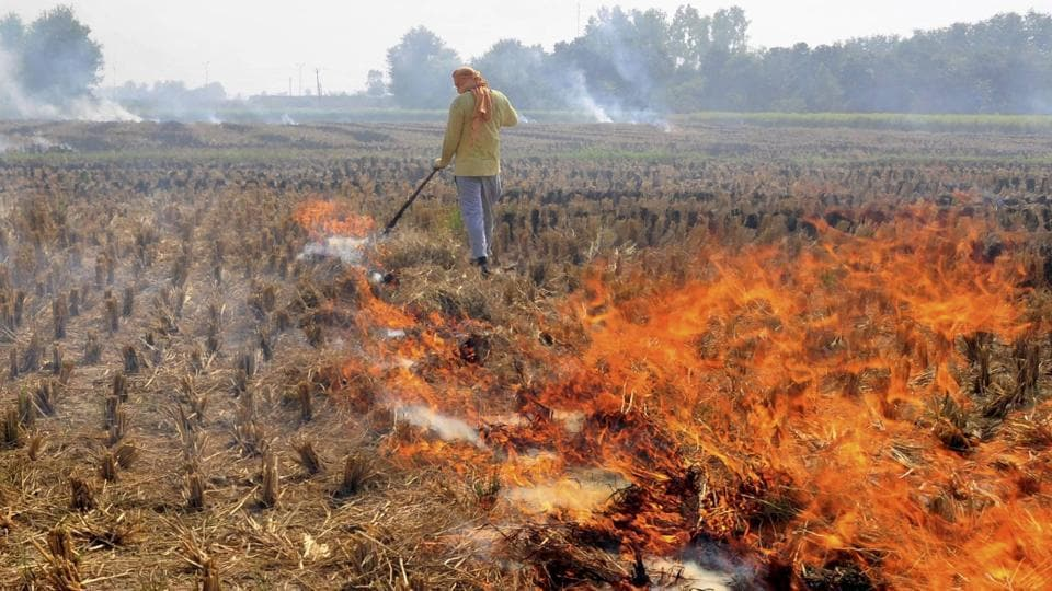The problem of stubble burning has been recurring despite promises and announcements by the states and Centre.