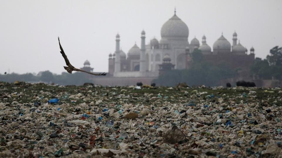 Garbage is seen on the polluted banks of the river Yamuna near Agra's Taj Mahal. The 17th century mausoleum is turning yellow and green under filthy air in the world's eighth-most polluted city. Tiny insects from the drying Yamuna, into which the city pours its sewage crawl into the Taj Mahal, their excrement further staining the marble, an environmental lawyer told the Supreme Court. (Saumya Khandelwal / REUTERS)