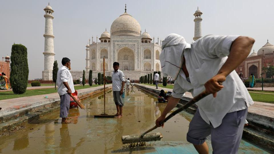 Pollution Insect Excrement Turning Taj Mahal Yellow And