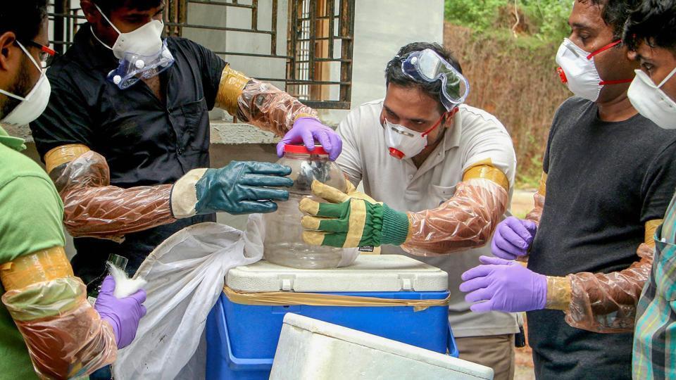 Kerala,Nipah virus,Bats