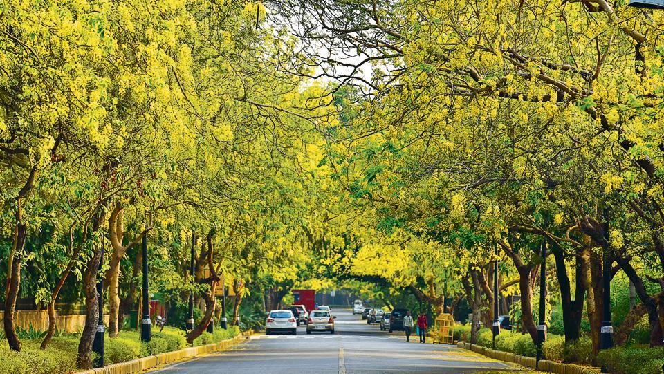 Kalidasa,Bhartrihari,Vatsyayana