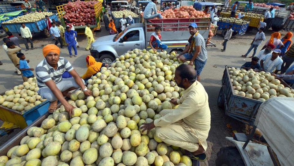 Roopewal,Kapurthala,melons