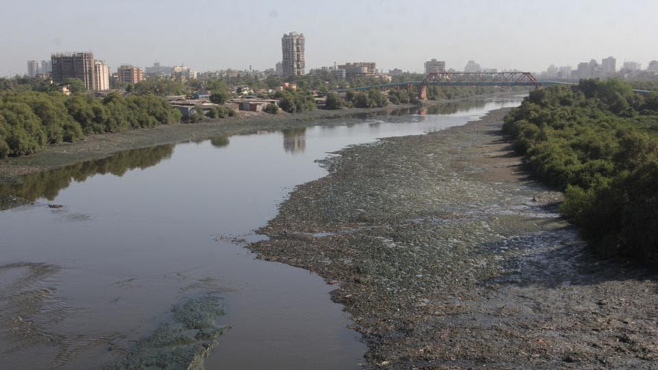 Saket creek will be used to ply ferries to Mumbai and Navi Mumbai.