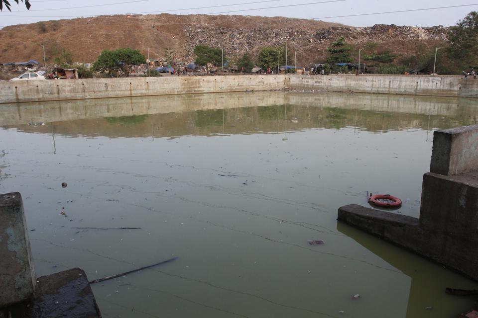 Mumbai,Thane,dead fish