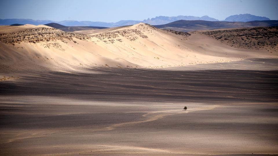 Parts of southern Morocco are rich hunting grounds, as the wind uncovers meteorites and their black hue is easy to spot against the near-white sand.
