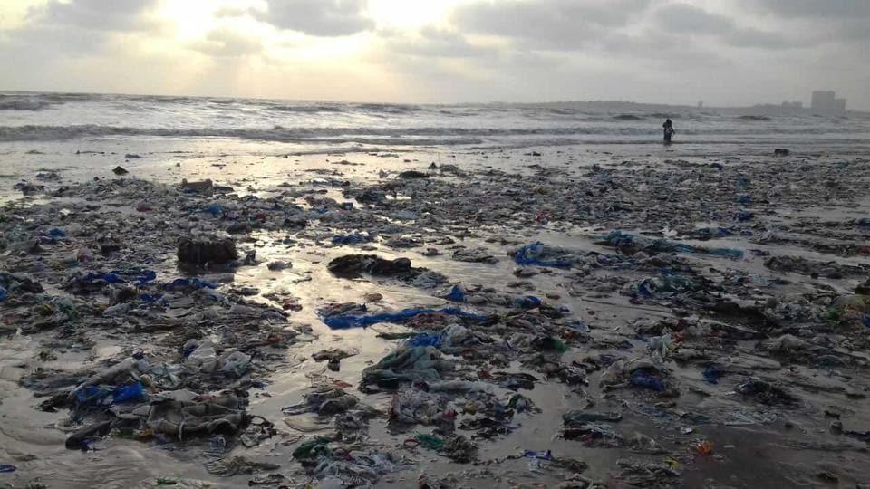 Versova beach,Versova beach clean-up,beach clean-up in Mumbai