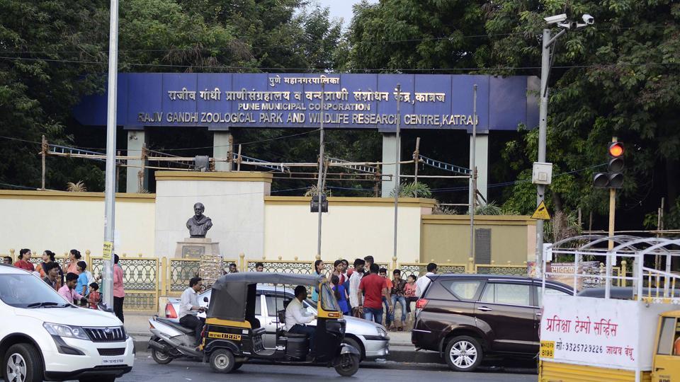 Pune,animal,zoo