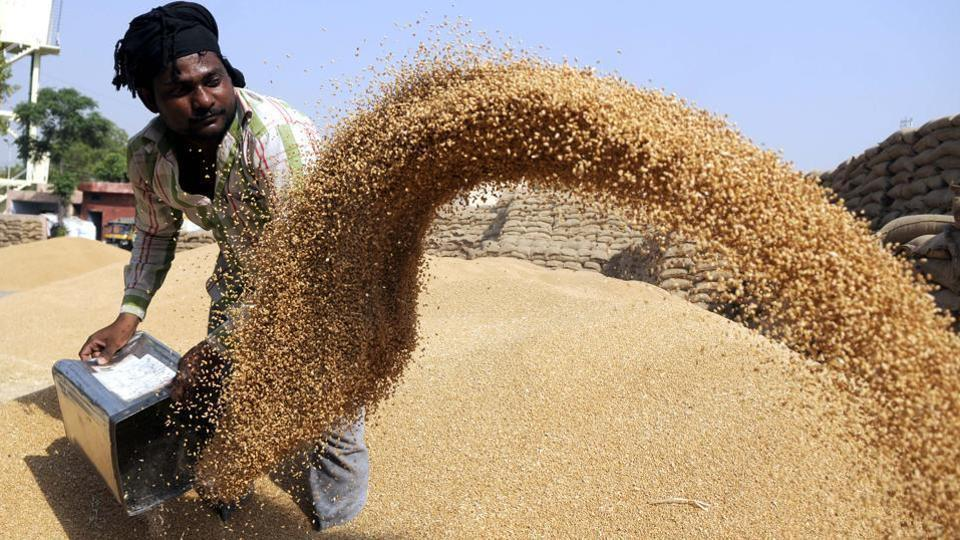Wheat storage,FCI guarantee,unused silos