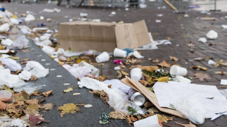 Gurugram District Bar Association said the move has been taken considering the harmful effects that styrofoam and plastic cups have on the environment.