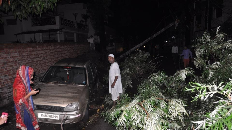Hail and accompanying strong winds uprooted trees at several places in Dehradun on Friday night.