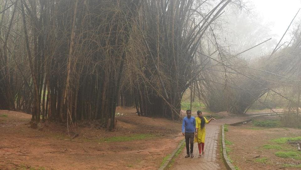 A couple walks along a path at Cubbon Park on a misty afternoon following monsoon rains in Bangalore on June 2, 2018.