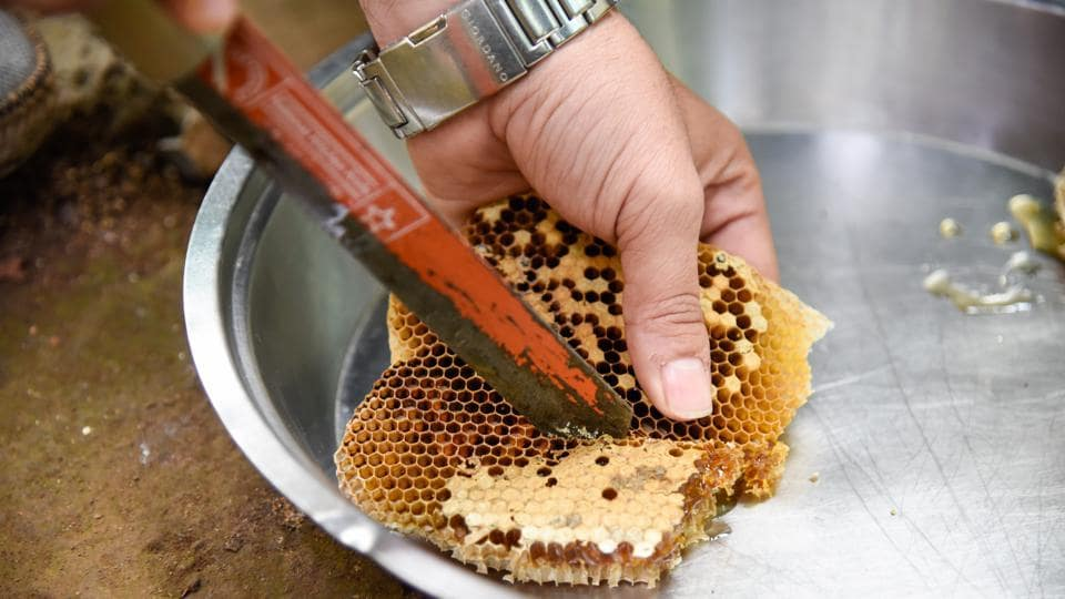 There are 5,566 bee keepers in Uttarakhand who produce over 1,400 tonnes of honey annually.