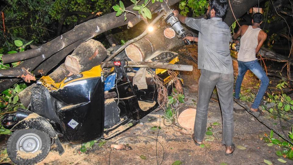 A huge tree fell on an autorickshaw on Paud road near More Vidyalaya in Pune on Wednesday.