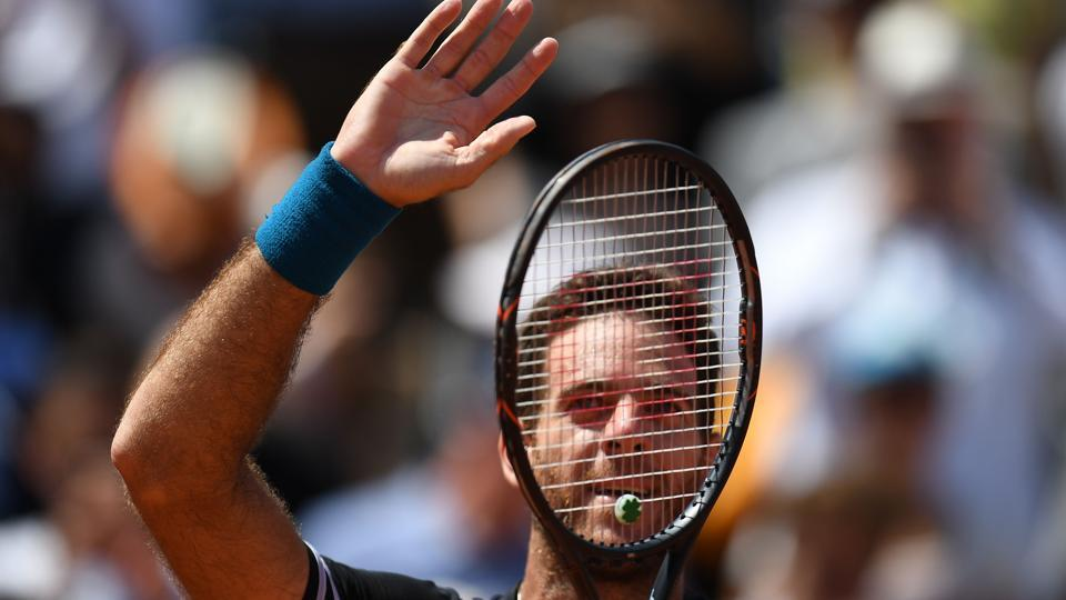 Argentina's Juan Martin del Potro celebrates after victory over Croatia's Marin Cilic at the end of their men's singles quarter-final match at French Open.