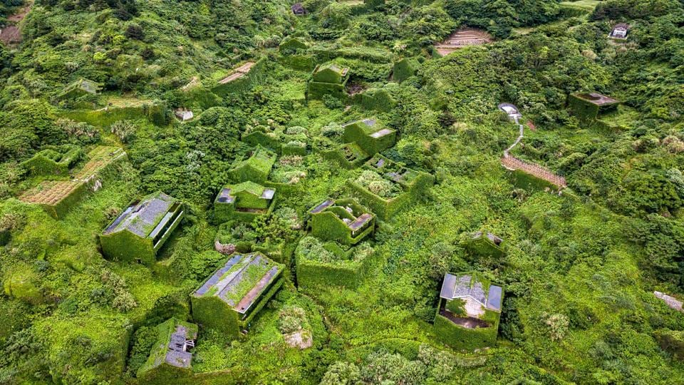 """A blanket of greenery covers the ghost town, which is perched atop cliffs looking west into sea mists obscuring the horizon. Abandoned homes ravaged by weather and creeping vines stand silent but for the surf, the whine of mosquitoes, and birdsong. This is Houtouwan — """"Back Bay"""" in Mandarin — an abandoned fishing village engulfed by nature on the far-eastern island of Shengshan, off the coast of Shanghai. (Johannes Eisele / AFP)"""