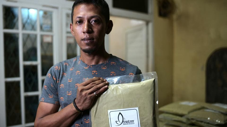 "Mukminin Arief, owner of Butterfly Botanical holds a packet of kratom powder at the company's facility. To keep business growing some processors are increasing the cleanliness in the crushing and drying process and are using ultraviolet lights to kill bacteria. ""Thank God, after we implemented that and reassured our buyers, sales returned to normal,"" Arief said. (Dimas Ardian / Bloomberg)"