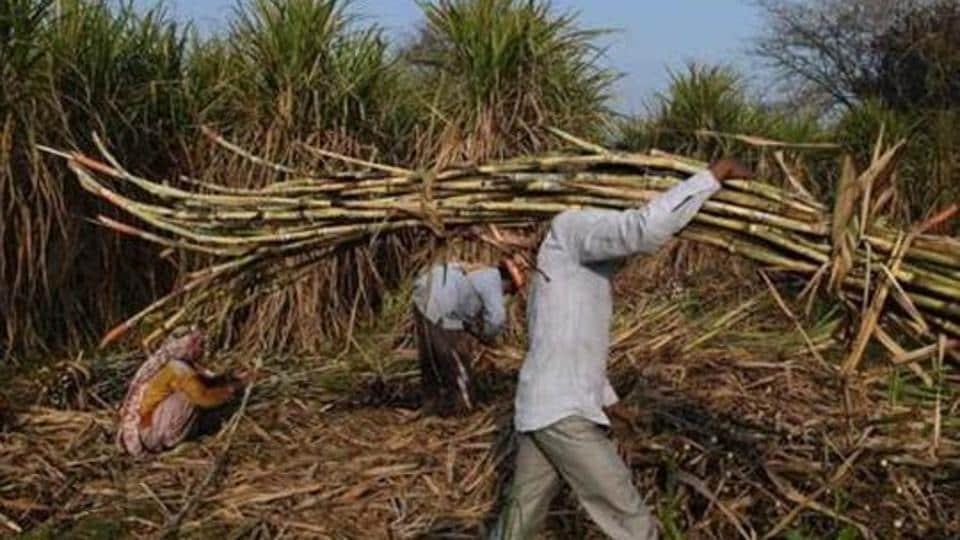 Sugar industry,Sugar mills,7000 crore package to sugar industries