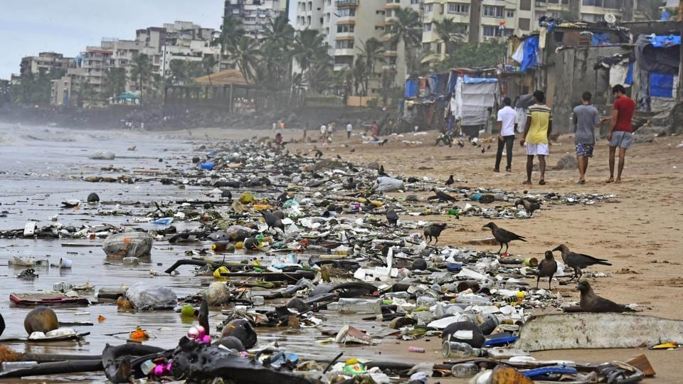 Plastic waste severely affects aquatic life. 2016.