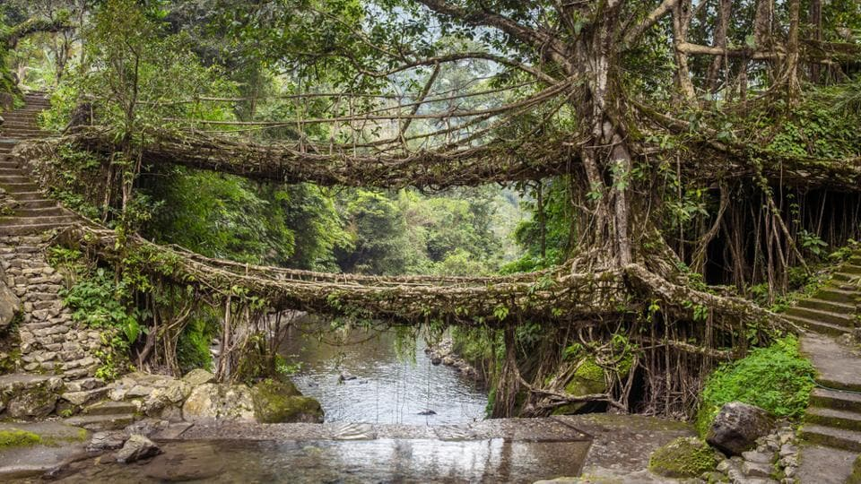 Meghalaya,Meghalaya's heritage,Meghalaya's Cherrapunjee