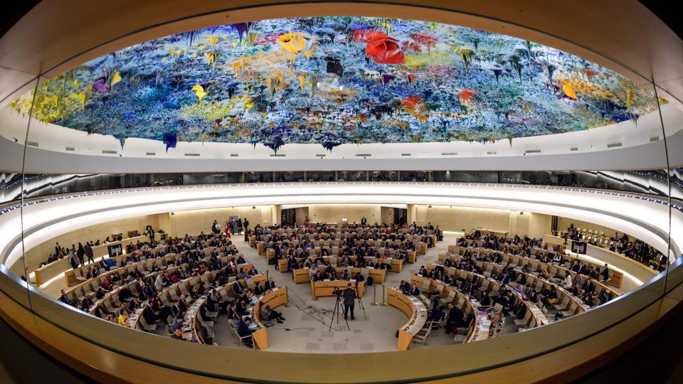 UN,UN Human Rights Council,UN General Assembly